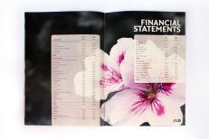 Annual Report | Eco Mission (Financial Statement)