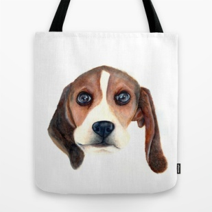 Beagle